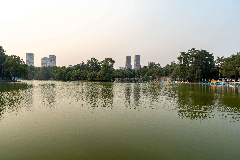 Lac dans le bois de Chapultepec. Lieu de rencontre dominical pour les familles et groupes d'amis.